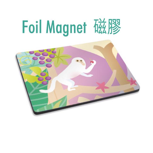 Foil Magnet