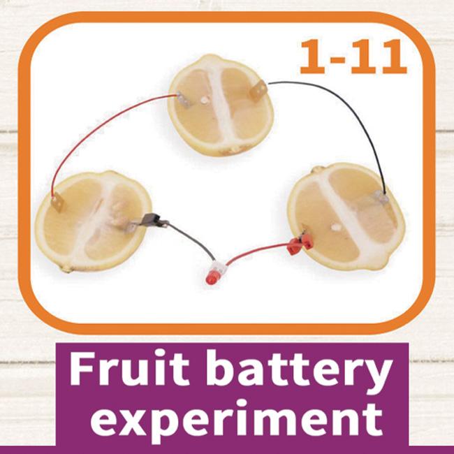 Fruit Battery Experiment